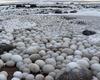 芬兰发现稀有冰蛋怎么回事?芬兰为什么会出现稀有冰蛋景观图片一览