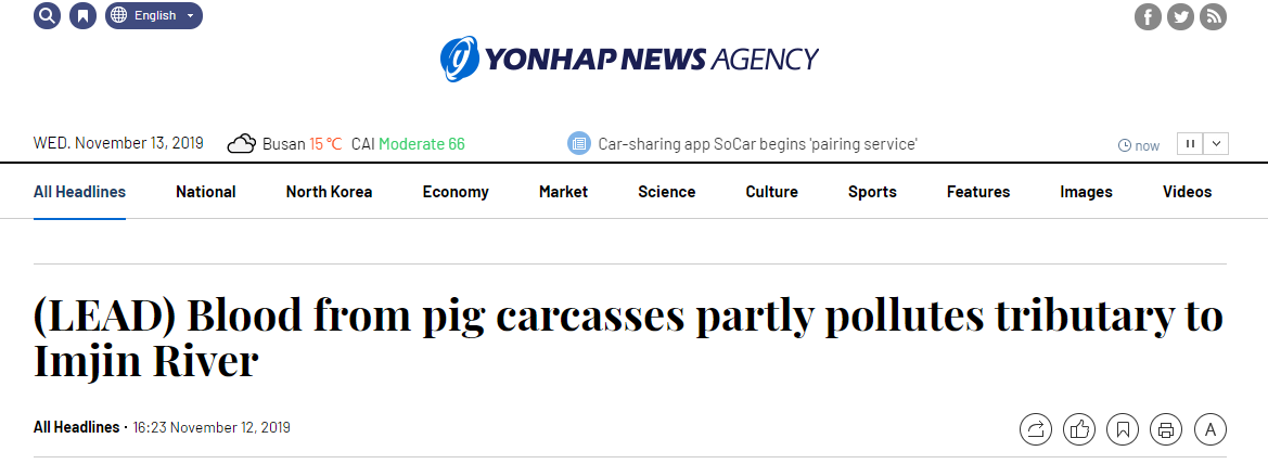 韩国宰5万头猪新闻介绍 韩国宰5万头猪背后真相揭秘