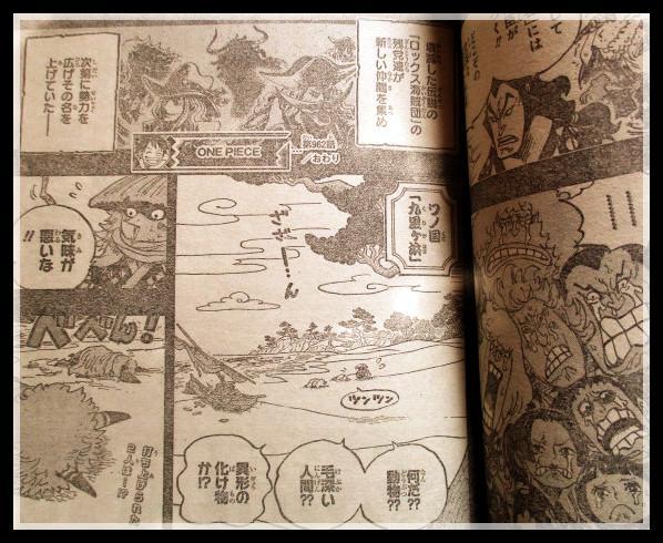 海賊王962話:小菊原來是以藏親弟弟,御田收留一堆問題少年