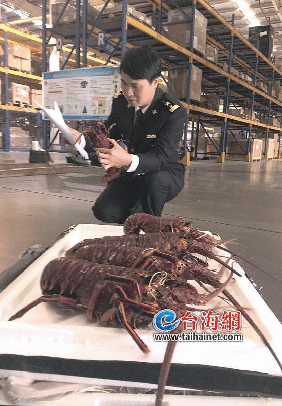 厦门鲜活水海产品进口量跃居全国第四