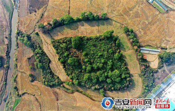 江西发现史前遗址怎么回事江西哪里发现史前遗址长什么样现场曝光