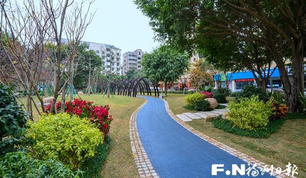 福州晋安区东二环绿化提升项目本月中旬基本完成