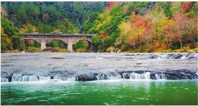 屏南鴛鴦獼猴省級自然保護區問題整改穩步推進