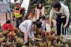 """福州:20组家庭共建儿童""""梦想花园"""""""