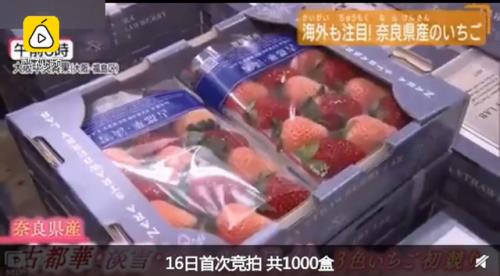 日本一颗草莓900元 富人表示:不算离谱