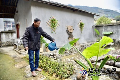 墘面村老党员陈开坦为庭院里的植物浇水。