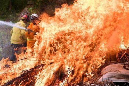 澳大利亞東海岸林火持續蔓延。 新華社/法新