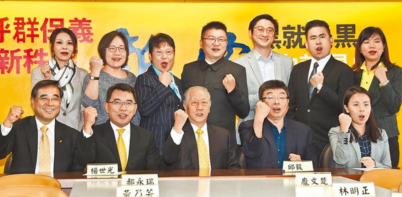 新党声明不会解散 将持续追求中华民族统一复兴