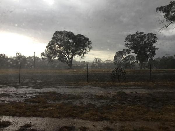澳大利亞下雨了什么情況 大雨幫助撲滅32起森林大火