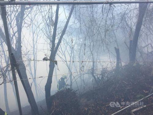 台中市发生火烧山延烧约1.5公顷 消防局派员救援