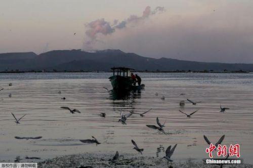 菲律宾塔阿尔火山或再爆发 当局警告居民:别回家