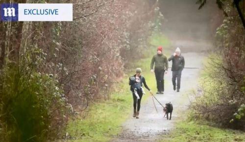 """未受""""引退""""风波影响?梅根携子在加拿大公园遛狗"""