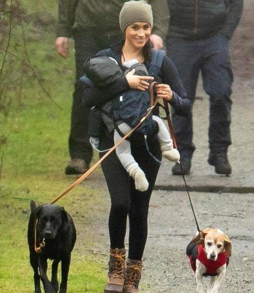 梅根抱娃遛狗怎么回事?梅根抱娃遛狗照片曝光穿搭超接地气