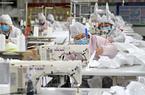 福建相關生產企業:加緊生產 保障供應