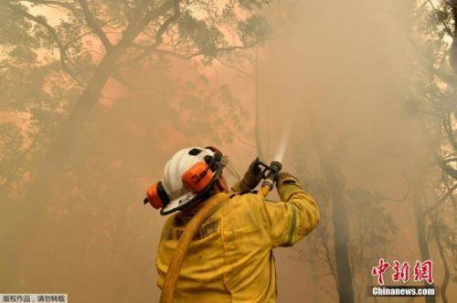 有助滅火緩解干旱 澳悉尼或迎來四年來最大降雨