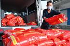 福建:粮食市场货源充足 价格平稳