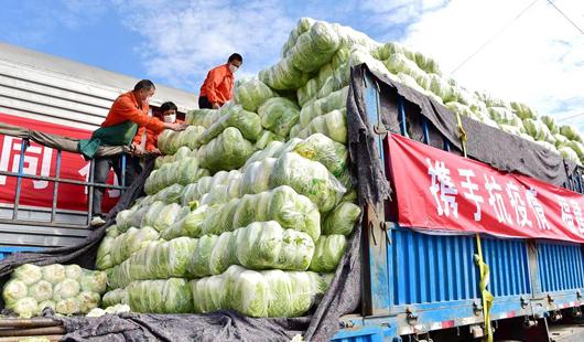 福建600吨蔬菜驰援湖北武汉 分两批次运达武昌东站