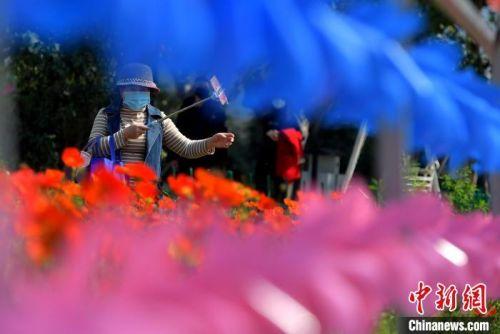 图为戴着口罩的市民在福州花海公园内用手机自拍。 张斌 摄