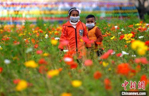 图为两位戴着口罩的外国小朋友在福州花海公园赏花。 张斌 摄