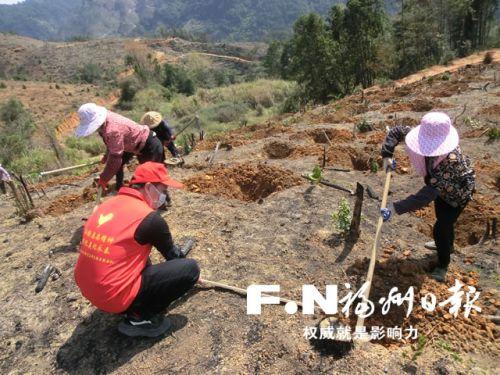 """福州市林業部門多措施力保造林綠化""""不誤時"""""""
