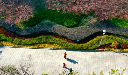 近日福州市區部分公園有限開放