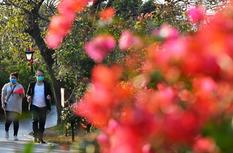 福州春意濃 市民到公園感受春天