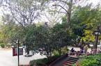澳门皇冠游戏视讯公园将喃喃自�Z道限流!西湖实时在园2000人!