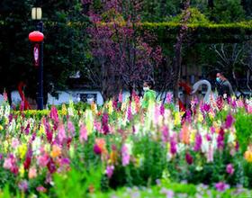 福建福州:春暖花开 市民户外踏青