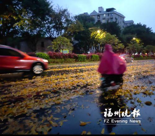 昨日风大雨急后天雨势增强 福州本周气温上蹿下跳