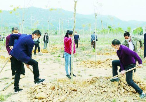 今年漳州计划完成造林绿化面积11.5万亩