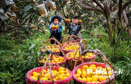 """福州市農業農村局牽線""""產供銷"""" 聯動打造農產品銷售新模式"""