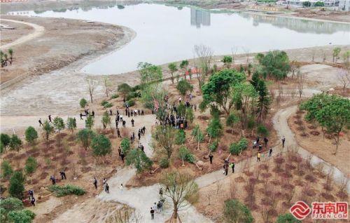 福建省军民参加全民义务植树活动