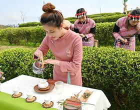 新葡春茶节在新葡晋安春伦生态茶园举行