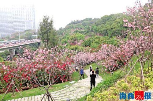 4月1日起 廈門市恢復本市范圍內團隊旅游