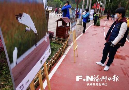 爱鸟周活动在福州国家森林公园举办