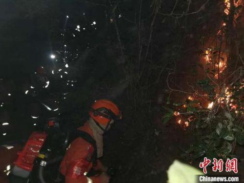 云南大理森林火灾最新消息扑灭了吗?云南大理森林火灾现场图起火原因是什么