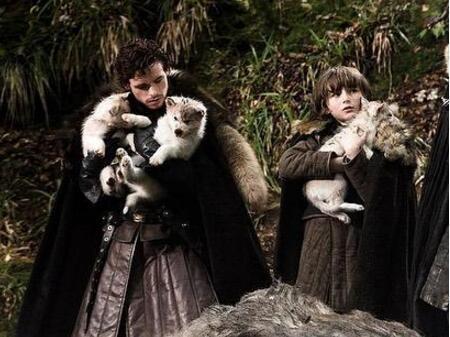 權游冰原狼演員去世怎么回事 奧丁去世原因得了什么病