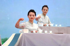 福建福鼎举办第九届白茶开茶节