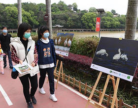 福建省第38届爱鸟周现场活动在福州举行