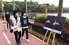 福建省第38屆愛鳥周現場活動在福州舉行