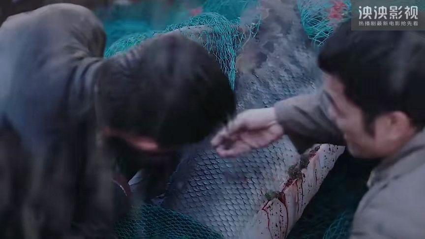 大鱼2020电影完整版高清在线观看 大鱼2020电影无删减超清百度云资源地址