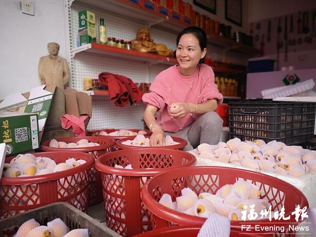 福清东山村何芽珍:朋友圈帮卖枇杷 每天能卖300多箱