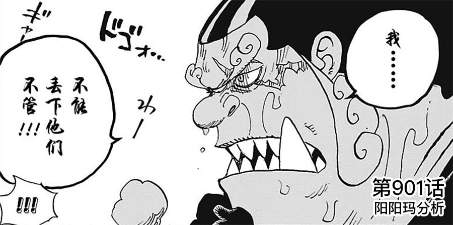 海贼王漫画第976话鼠绘汉化剖析最新情报 再析第十人