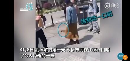 武汉解封首日黄鼠狼上街讨饭怎么回事 详细经过现场图