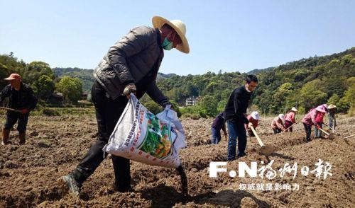 寿山乡九峰村农民在田间耕种。见习记者 赖志昌 摄
