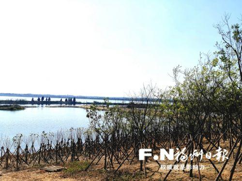 东湖湿地公园。记者 余少林 摄