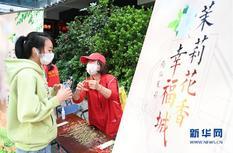 福州20万株茉莉花苗免费送 活动持续至29日