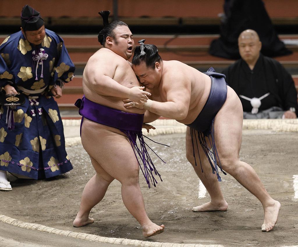 日本相撲協會:5名運動員被確診感染新冠病毒