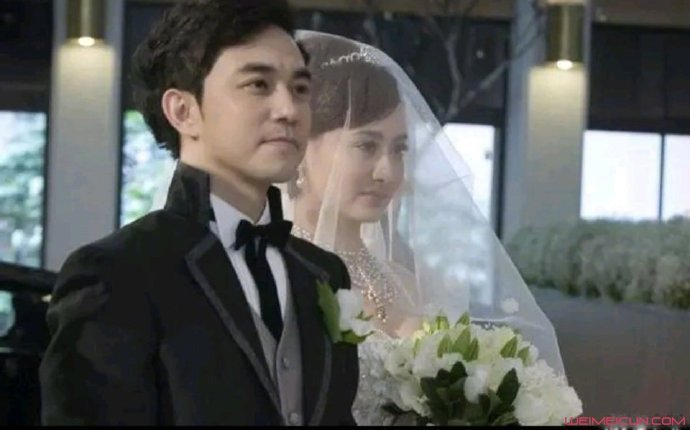 陳德容老公是誰 王贊策已成前夫離婚原因被曝光
