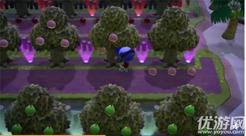 動物之森果樹有哪些 動物森友會果樹收集攻略